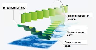 Поляризация - схема
